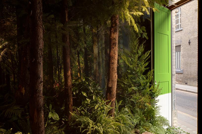 airbnb-pantone-greenery02